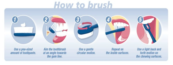 How to brush your teeth Inspiro Lilydale
