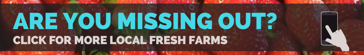 local farms seeling fresh food to the public