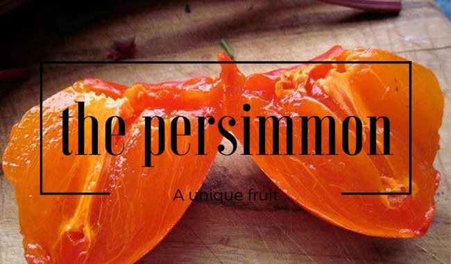 Are persimmons healthy? Inspiro dietitian Tracey talks about one of the lesser known fruits