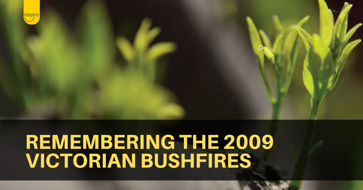 Remembering the 2009 Victorian bushfires